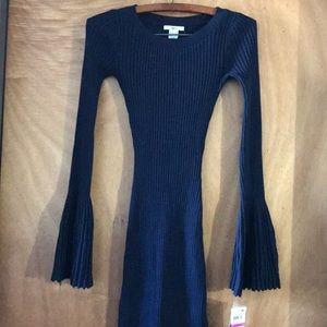 Bar lll Ribbed Navy Blue Dress.